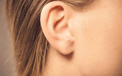 Das Ohr – Hochkomplex und besonders sensibel